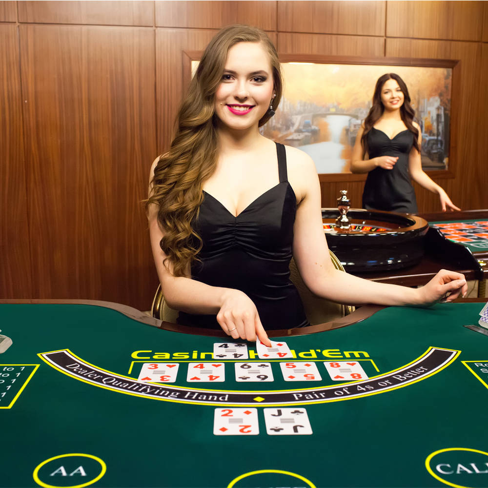 all sex casino